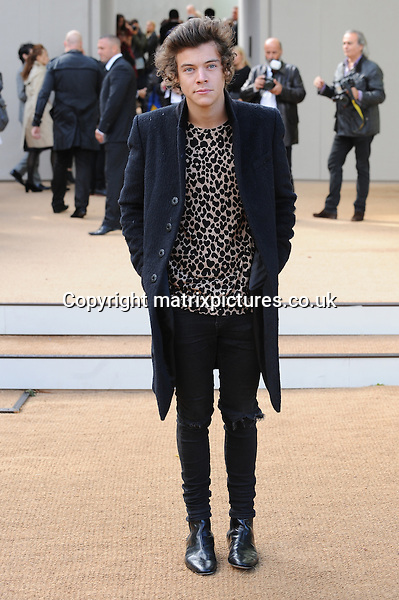 NON EXCLUSIVE PICTURE: PAUL TREADWAY / MATRIXPICTURES.CO.UK<br /> PLEASE CREDIT ALL USES<br /> <br /> WORLD RIGHTS<br /> <br /> Harry Styles of English-Irish boy band One Direction attends the Burberry Prorsum catwalk show during London Fashion Week S/S 2014, at Kensington Gardens, in London.<br /> <br /> SEPTEMBER 16th 2013<br /> <br /> REF: PTY 136149