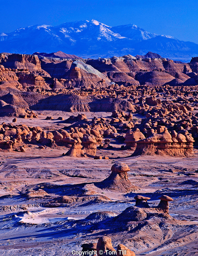 Goblin Valley & Henry Mountains at Sunset, Goblin Valley State Park, Utah