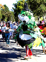 The Stanford Tree perform before Saturday's, November 23, 2013, Big Game at Stanford University.