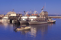 Plymouth, Massachusetts, Atlantic Ocean, Whale watching boats sit in Plymouth Harbor attached to the docks. One boat is attached to a buoy.