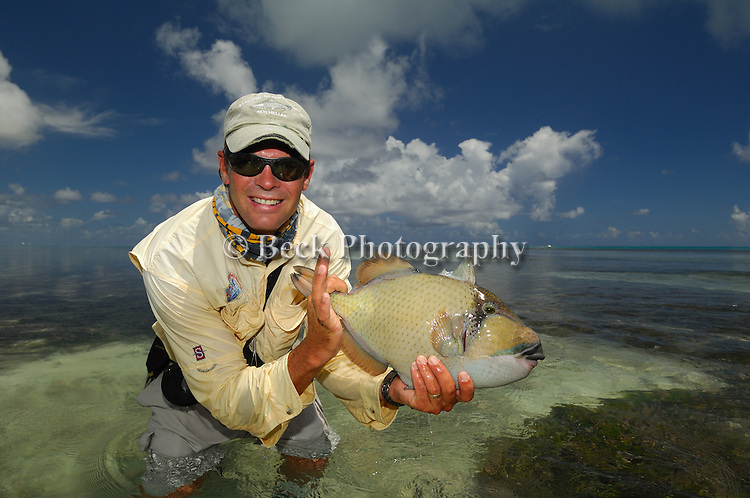 Alphonse Island Trigger Fish