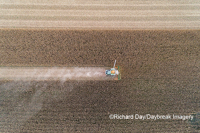 63801-13105 Harvesting corn in fall-aerial  Marion Co. IL