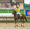 Balistico winning at Delaware Park on 7/6/17
