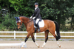 Stapleford Abbotts. United Kingdom. 03 August 2019. Class 4. Unaffiliated dressage. Brook Farm training centre. UK.~ 03/08/2019.  MANDATORY Credit Ellen Szalai/Sport in Pictures - NO UNAUTHORISED USE - 07837 394578