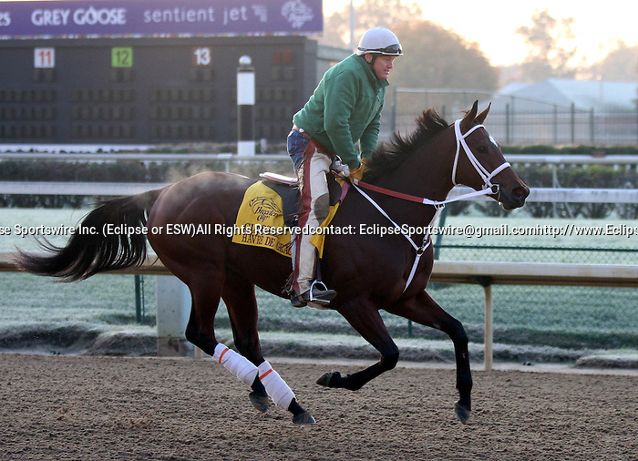 Breeders Cup Workouts Eclipse Sportswire