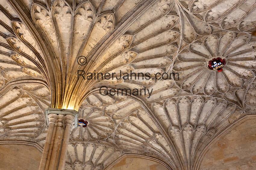 Great Britain, England, Oxfordshire, Oxford: Vaulted ceiling of The Hall of Christ Church College (founded by Cardinal Wolsey in 1525), part of Oxford University | Grossbritannien, England, Oxfordshire, Oxford: Gewoelbedecke der Halle des Christ Church Colleges (gegruendet von Cardinal Wolsey 1525), gehoeren zur Oxford University