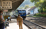 Train arriving at platform railway station Ella, Badulla District, Uva Province, Sri Lanka, Asia