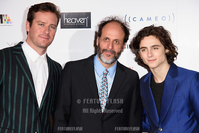 Armie Hammer, Luca Guadagnino &amp; Timothee Chalamet at the 38th Annual London Critics' Circle Film Awards at the Mayfair Hotel, London, UK. <br /> 28 January  2018<br /> Picture: Steve Vas/Featureflash/SilverHub 0208 004 5359 sales@silverhubmedia.com