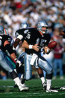 OAKLAND, CA - Quarterback Jeff Hostetler of the Oakland Raiders in action during a game against the Miami Dolphins at the Oakland Coliseum in Oakland, California in 1995. Photo by Brad Mangin
