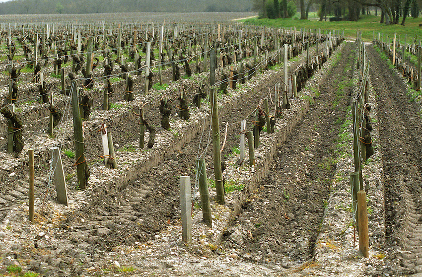 Stony. Vineyard. Clay and sand soil just ploughed at Chateau Lagrange. Medoc, Bordeaux, France