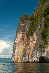 Limestone cliff near Temintoi, Triton Bay, Papua
