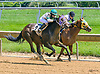 Tiz Showbiz winning at Delaware Park on 7/17/17