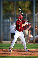 Boston College Eagles pinch hitter Anthony Maselli (15) at bat during a game against the Minnesota Golden Gophers on February 23, 2018 at North Charlotte Regional Park in Port Charlotte, Florida.  Minnesota defeated Boston College 14-1.  (Mike Janes/Four Seam Images)
