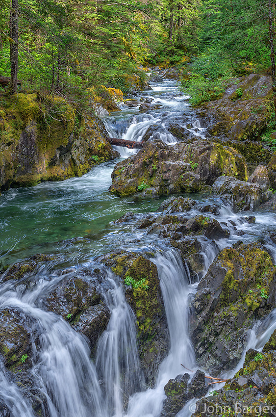 ORCAN_D104 - USA, Oregon, Willamette National Forest, Opal Creek Scenic Recreation Area, Multiple small falls and swift flow of Opal Creek with surrounding old growth forest.