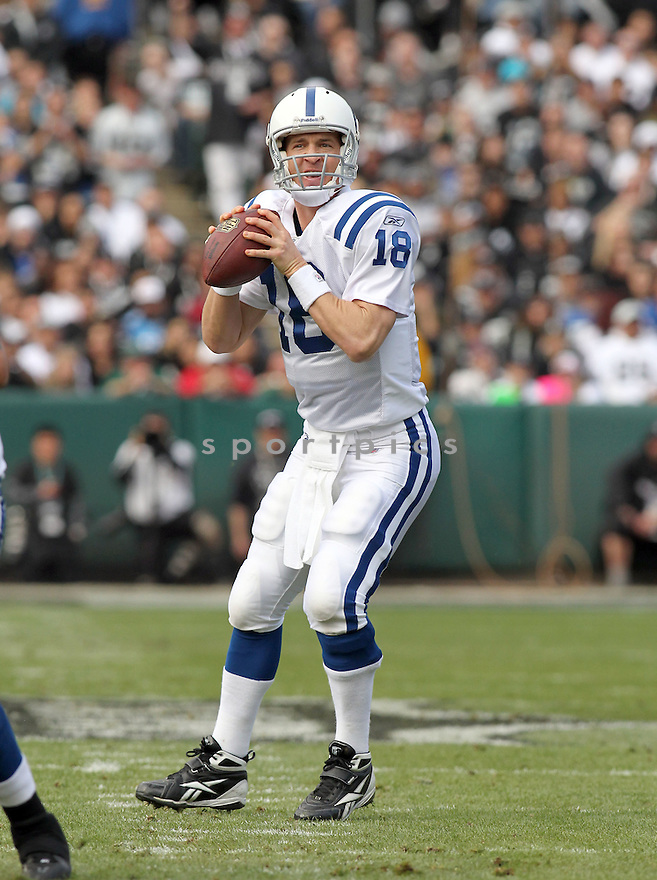 PAYTON MANNING, of the Indianapolis Colts in action durIng the Colts game against the Oakland Raiders at Oakland-Alameda County Coliseum in Oakland, California on December 26, 2010...Colts beat the Raiders 31-26