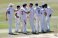 Matt Coles of Essex celebrates with his team mates after taking the wicket of Samit Patel during Essex CCC vs Nottinghamshire CCC, Specsavers County Championship Division 1 Cricket at The Cloudfm County Ground on 22nd June 2018