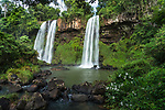 The Dos Hermanos Falls at Iguazu Falls National Park in Argentina.  A UNESCO World Heritage Site.  The flowers at right are the White Ginger Lily or White Garland-lily, Hedychium coronarium.