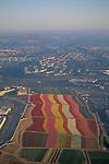 Susnet aerial over Carlsbad Flower Fields,+Northern San Diego Coastline San Diego County, CALIFORNIA