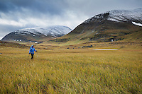 Female hiker hikes along Kunsleden trail north of Sälka mountain hut, Lappland, Sweden