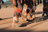 Xingu Indigenous Park, Mato Grosso State, Brazil. Aldeia Kuikuro - central village; warriors dancing during the Taquara ceremony with bells and flip flops.