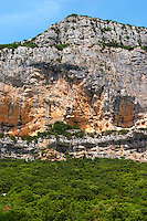 Domaine de l'Hortus. The Montagne Massif de l'Hortus mountain cliff. Pic St Loup. Languedoc. France. Europe.