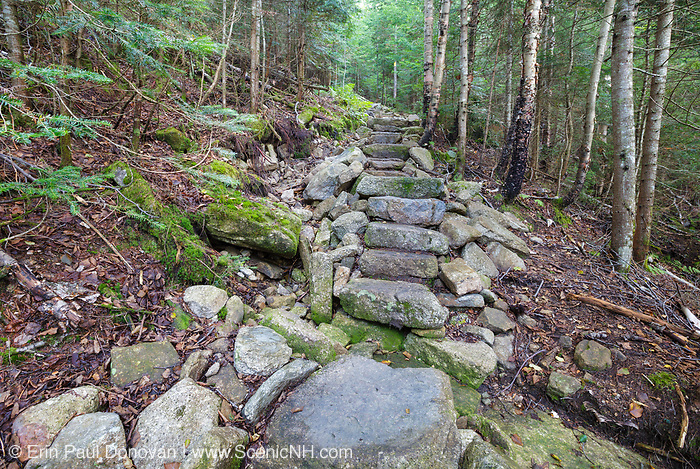 August 2015 - These stone steps along the Mt Tecumseh Trail in Waterville Valley, New Hampshire were built in 2011. And since being built the left-side of the trail has been slowly eroding away. There was no visible erosion here in 2011. However, a hole behind the moss covered rock was not filled in at the time, and it has continued to erode away.