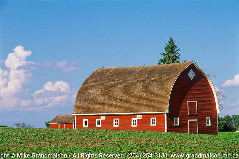 Red barn<br />Pilot Mound<br />Manitoba<br />Canada