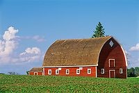 Red barn<br />