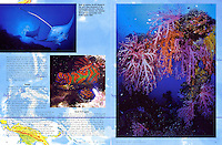 "DIVE TRAVEL Magazine - ""Micronesia"" Article - Photographs by Dale Sanders."