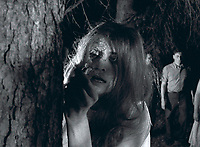 Night of the Living Dead (1968) <br /> Judith O'Dea<br /> *Filmstill - Editorial Use Only*<br /> CAP/KFS<br /> Image supplied by Capital Pictures