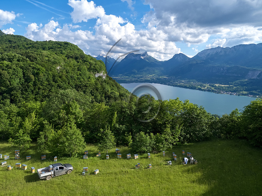 Aerial view in summer of an apiary near the Forclaz Pass near Annecy, France. Vue aérienne d'été d'un rucher près du col de la Forcaz près d'Annecy. France