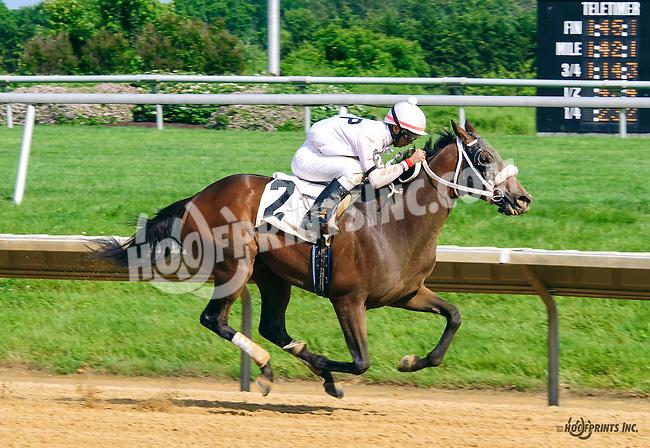 Takemetoneworleans winning at Delaware Park on 6/4/16