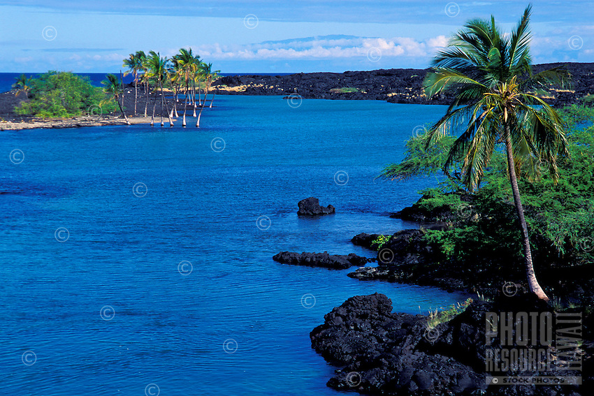Kiholo Bay lagoon: site with remnants of olden days fishpond. Big Island.