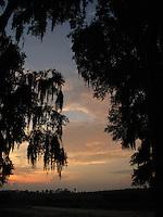Sunset in Hopkins Prairie, Florida.