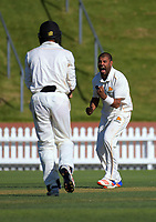 171031 Plunket Shield Cricket - Wellington v Otago