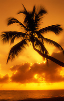 Dominican Republic, Bavaro Beach, sunrise