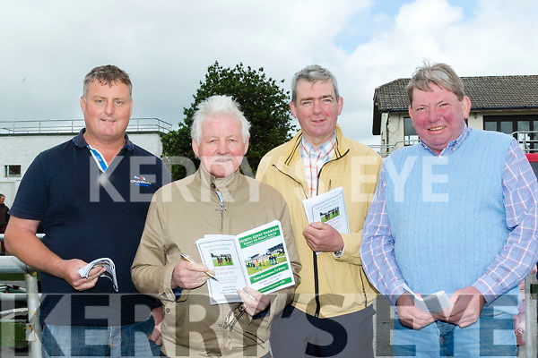 Bet friends<br /> --------------<br /> Johnny Brosnan, Davie Barrett with Con&amp;Bob Sugrue all from Tralee at the point to point horse meeting in Ballybeggan last Saturday.