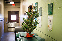 A poor, lonesome, discarded Christmas tree is seen in the trash area of an apartment building in New York on Saturday, December 31, 2016. The Dept. of Sanitation Mulchfest is on January 7th and 8th this year where you can see you tree being ground up into mulch. (© Richard B. Levine)