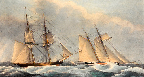 In the Hundred Guinea Match of September 1834, the schooner Galatea may have been first away, but Wayerwitch