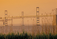 AJ4242, Chesapeake Bay Bridge, bridge, Chesapeake Bay, Maryland, Scenic view of the Chesapeake Bay Bridge crossing the Chesapeake Bay near Annapolis in the early morning light in the state of Maryland.