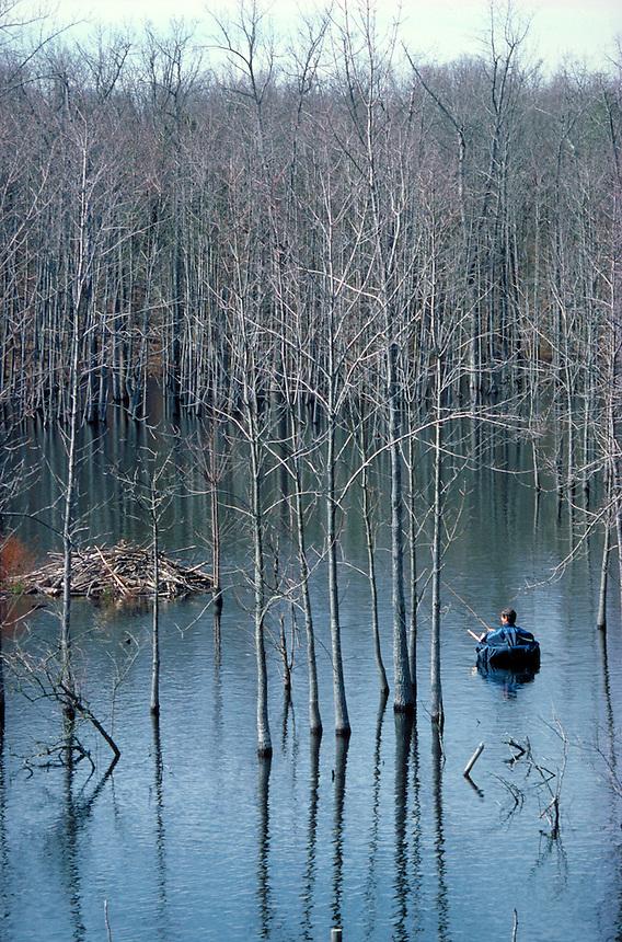 Angler fishing from belly boat on tupelo lake near Conway, Arkansas