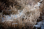 January 2013:  Winter light in Garden of the Gods, Colorado Springs, CO