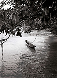 PANAMA, Bocas del Toro, Salt Creek Islands, a dugout canoe is tied to a tree in a Guaymi Indian village, Central America