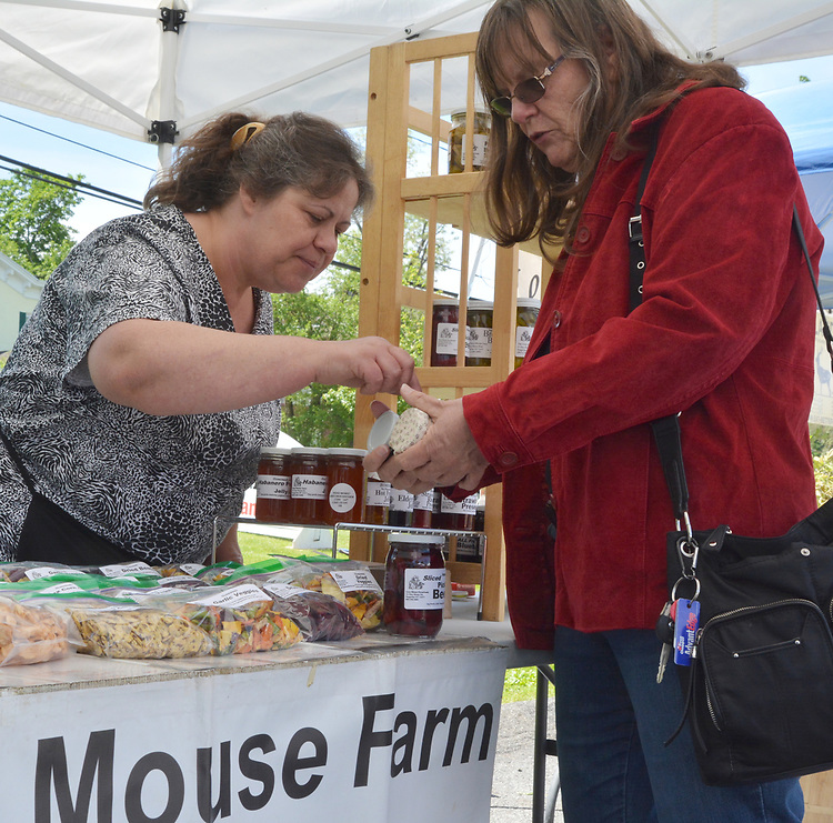 Linda, conducting sales at the Grey Mouse Farm booth, on the Opening Day of the 2017 Saugerties Farmer's Market on Saturday, May 27, 2017. Photo by Jim Peppler. Copyright/Jim Peppler-2017.