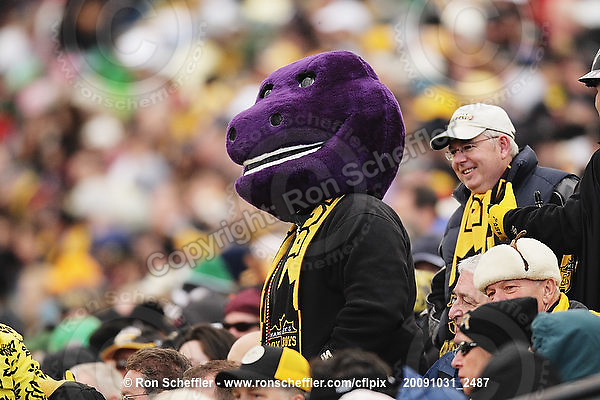 October 31, 2009; Hamilton, ON, CAN;  Hamilton Tiger-Cats fans - a Box J Boy dressed as the cartoon character Barney on this Halloween day game. CFL football: Saskatchewan Roughriders vs. Hamilton Tiger-Cats at Ivor Wynne Stadium. The Tiger-Cats defeated the Roughriders 24-6. Mandatory Credit: Ron Scheffler. Copyright (c) 2009 Ron Scheffler.