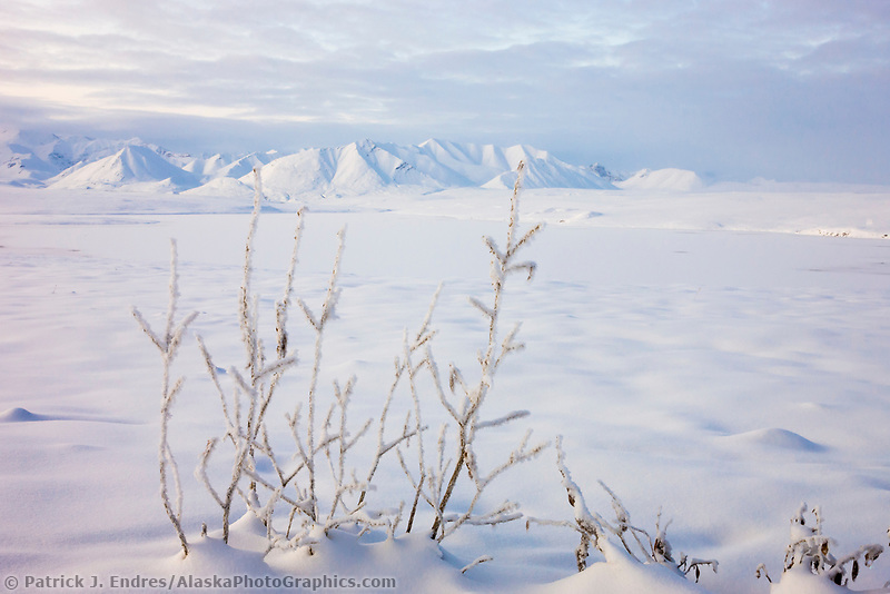 Snow covered Endicott Mountains of the Brooks Range, Alaska.