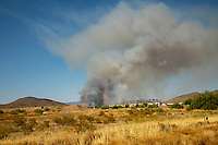 Phoenix AZ - June 23: Evacuation ordered due to a 50 acre brush fire in North Phoenix, Arizona on June 23, 2020. <br /> CAP/MPI/DAM<br /> ©DAM/MPI/Capital Pictures