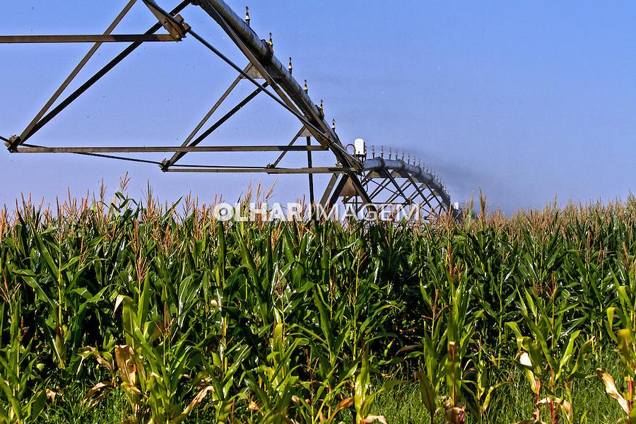 Sistema de irrigaçao agricola durante seca do Rio Tiete. Sud Mennucci. Sao Paulo. 2014. Foto de Ana Druzian.
