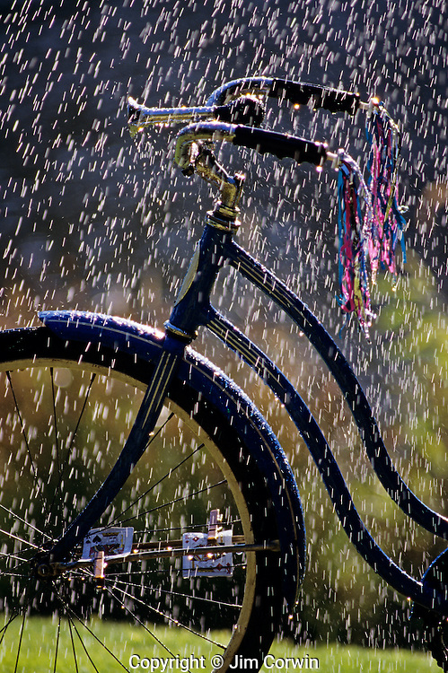 Classic Schwinn girls bike with horn, streamers and cards in spokes on a rainy summer day, Lake Pleasant, Bothell, Washington State, USA