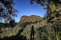 Rancho El Pe&ntilde;asco<br /> &copy;Foto: LuisGutierrrez/NortePhoto